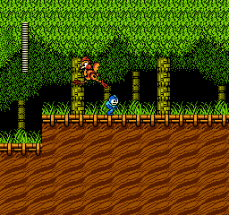Mega Man 2 USA 145 Mega Man 2 NES Nintendo Review Screenshot