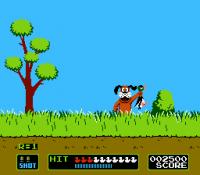 Duck Hunt ...