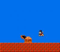 Duck Tales...